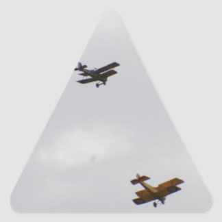 SE5A And Sopwith Camel Models Triangle Sticker