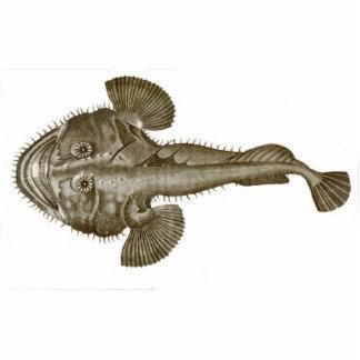 SEA DEVIL FISH - Coaster Standing Photo Sculpture