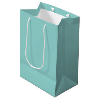 Sea Green Medium Gift Bag