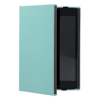 Sea Green iPad Mini Cover