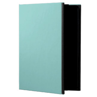 Sea Green iPad Air Case
