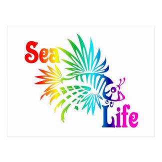 Sea Life Lionfish Postcard