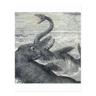 Sea Monster Vs Sea Serpent Post Cards