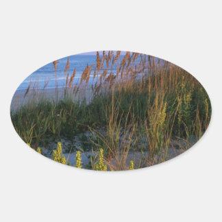 Sea Oats and Beach Elder Oval Sticker