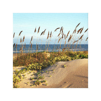 Sea Oats and Sand Dunes Canvas Print