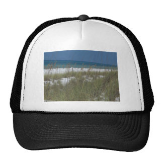Sea Oats and Waves Cap