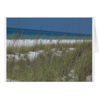 Sea Oats and Waves Greeting Card