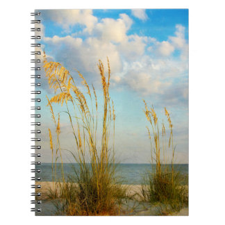 Sea Oats At the Beach Note Book