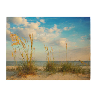 Sea Oats At the Beach Wood Canvas