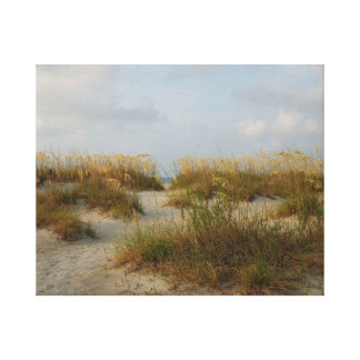 Sea Oats Stretched Canvas Print