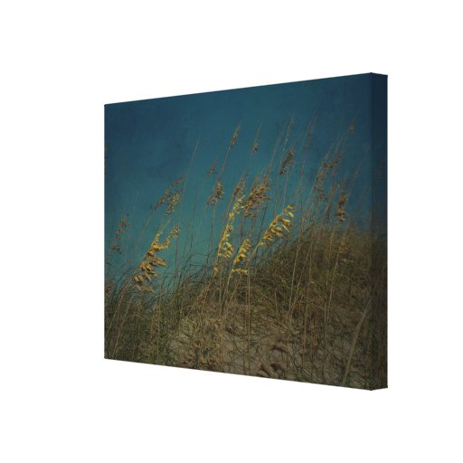 Sea Oats Gallery Wrapped Canvas