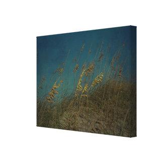 Sea Oats Canvas Print