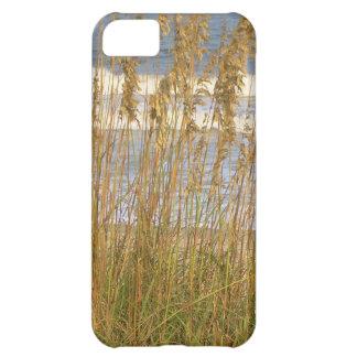 Sea Oats iPhone 5C Covers