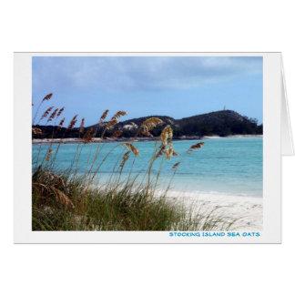 Sea Oats Note Card