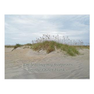 Sea Oats on Sand Dune Outer Banks NC Post Card