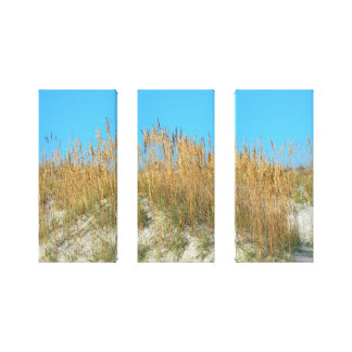 Sea Oats on the beach sand dunes Canvas Print