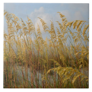 Sea Oats on the beach sand dunes Large Square Tile