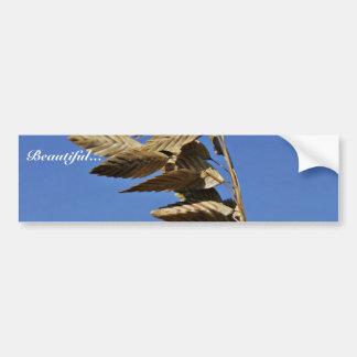 Sea oats panicle with spikelets car bumper sticker