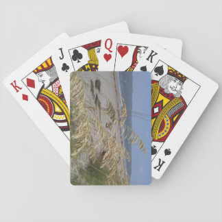 Sea Oats Playing Cards