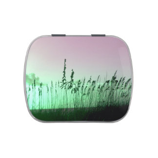 sea oats red green florida sunrise jelly belly tins