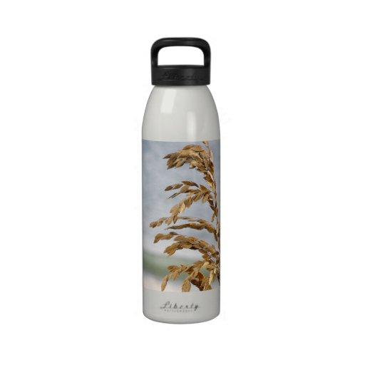 Sea Oats, Sea Breeze Water Bottle