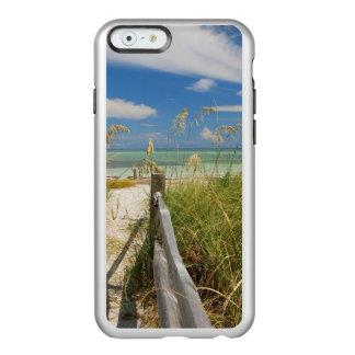 Sea oats Uniola paniculata) growing by beach Incipio Feather® Shine iPhone 6 Case