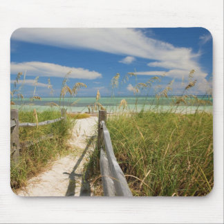 Sea oats Uniola paniculata) growing by beach, Mouse Pad