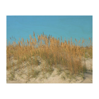 Sea Oats Wood Canvases