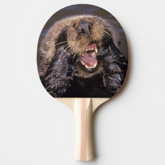 Sea Otters, Enhydra lutris 6 Ping Pong Paddle