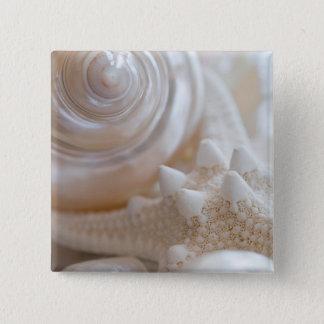 Sea Shell & Starfish Background - Beach Shells 15 Cm Square Badge