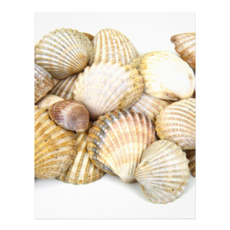 Sea Shells Collage Flyers