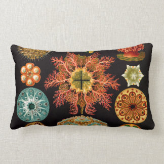 Sea Squirt Square Lumbar Pillow