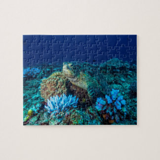 Sea Turtle on the Great Barrier Reef Jigsaw Puzzle