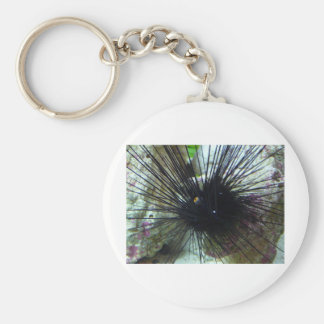 sea urchin basic round button key ring