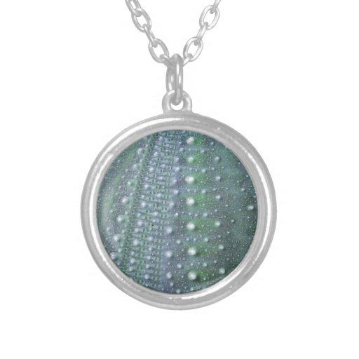 Sea Urchin-Green Jewelry