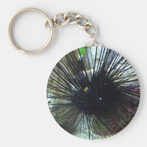 sea urchin keychain