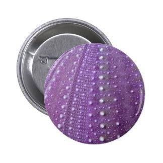 Sea Urchin-Purple Buttons