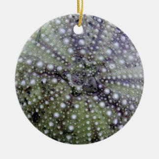 Sea Urchin Seashell Round Ceramic Decoration