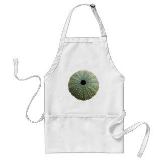 Sea Urchin Shell Apron