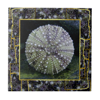 Sea Urchin With Abstract Background Small Square Tile