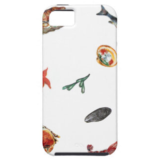 seafood iPhone 5 covers