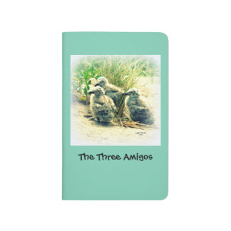 Seagull Chicks ~ The Three Amigos ~ Blue Journal