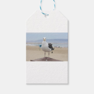 Seagull Gift Tags