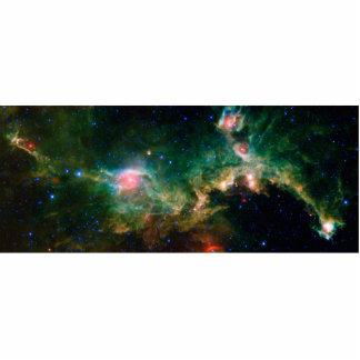 Seagull Nebula NASA Space Photo Sculptures