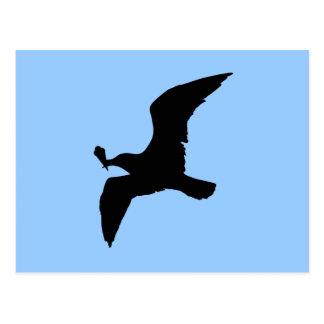 Seagull With Icecream Postcard