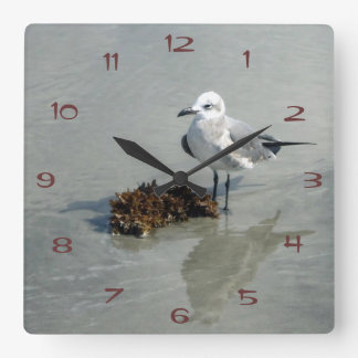 Seagull with Seaweed Square Wall Clock
