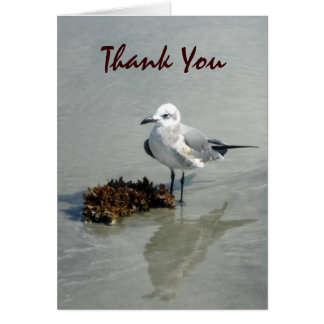 Seagull with Seaweed Custom Cards
