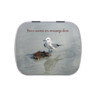 Seagull with Seaweed Jelly Belly Tins