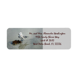 Seagull with Seaweed Return Address Label