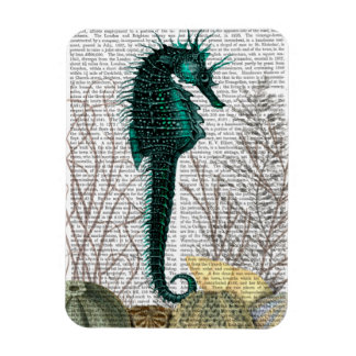 SeaHorse and Sea Urchins Rectangular Photo Magnet